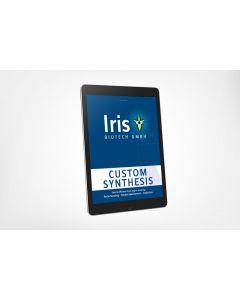 Custom Synthesis eBook