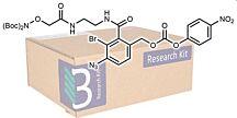Belyntic Peptide Purification Kit (24x10µmol)