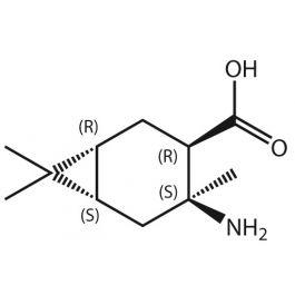 Amino 477 Me3 BCheptane COOH RRSS