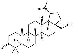 3-Oxobetulin