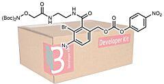 Belyntic Developer Kit
