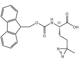 Fmoc-L-Photo-Methionine