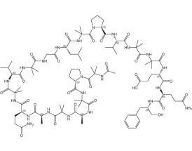 Alamethicin