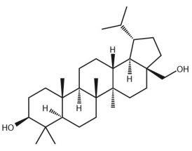 Dihydrobetulin