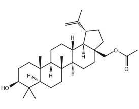 28-Acetylbetulin