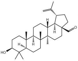 Betulinaldehyde