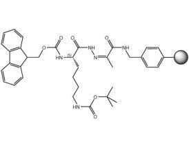 Fmoc-L-Lys(Boc)-NHN=Pyv Resin