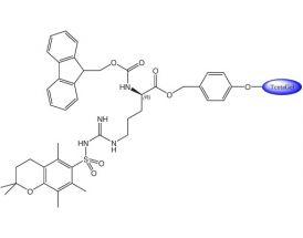 Fmoc-D-Arg(Pmc)-Wang TG