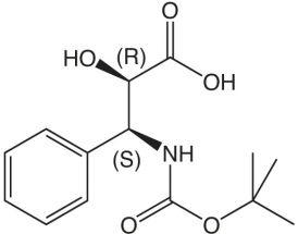 Boc-iSer(3-Ph)-OMe (2R,3S)