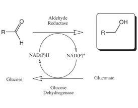 Aldehyde reductase Kit