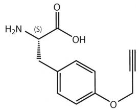 H-L-Tyr(Propargyl)-OH*HCl