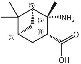 Amino-2,6,6-Me3-BCheptane-COOH (S,S,R,S)
