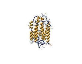 Bacteriorhodopsin