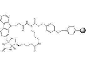 Fmoc-L-Lys(Biotin)-Wang Resin