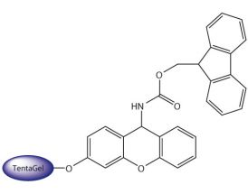 Fmoc-Sieber-TG resin