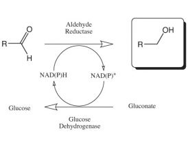 Aldehyde reductase Kit