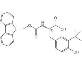 Fmoc-L-Tyr(3-tBu)-OH