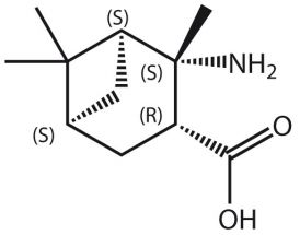 Amino-2,6,6-Me3-BCheptane-COOH*HCl (S,S,R,S)