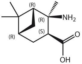 Amino-2,6,6-Me3-BCheptane-COOH*HCl (R,R,S,R)