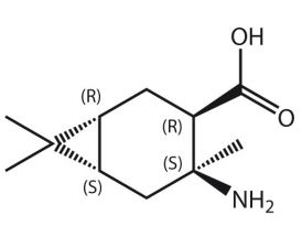Amino-4,7,7-Me3-BCheptane-COOH*HCl (R,R,S,S)