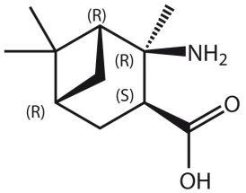 Amino-2,6,6-Me3-BCheptane-COOH (R,R,S,R)