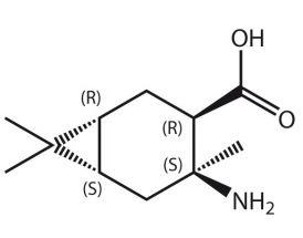 Amino-4,7,7-Me3-BCheptane-COOH (R,R,S,S)