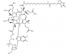 Biotin-dPEG™(3)-Cyanocobalamin