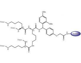 (Fmoc)4-Lys2-Lys-Rink TG