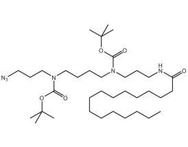Spermine(N3BBPalm)