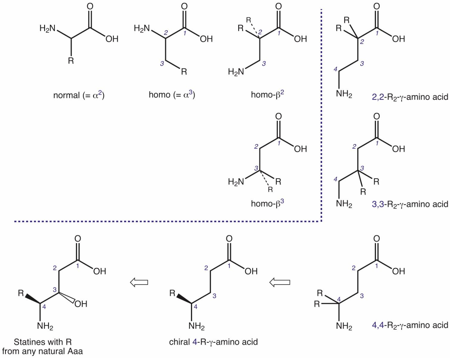 homologization of natural amino acids. Black Bedroom Furniture Sets. Home Design Ideas