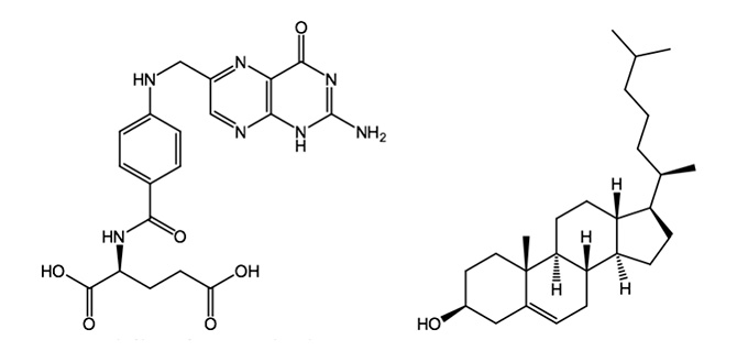 Folic Acid (left) and Cholesterol (right).