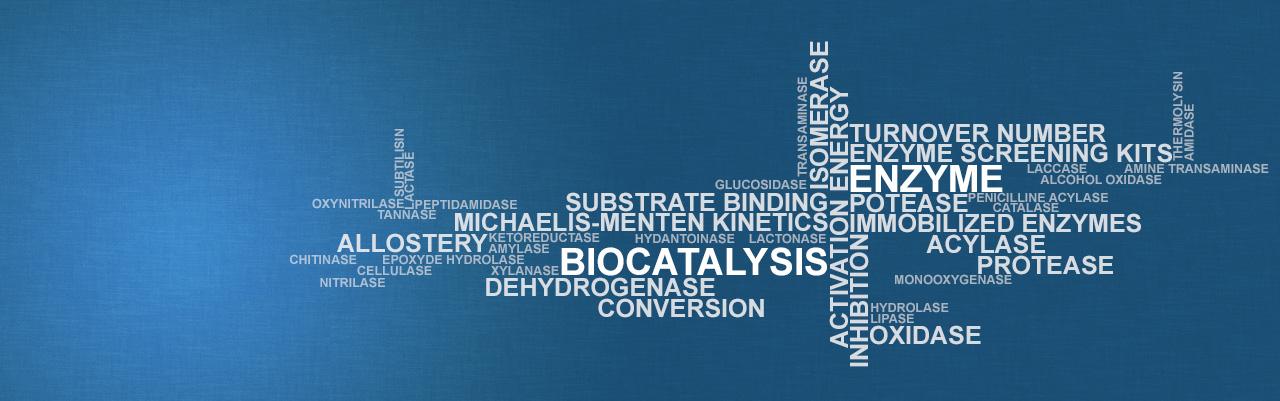 Biocatalysis